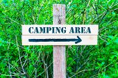 pic of directional  - CAMPING AREA written on Directional wooden sign with arrow pointing to the right against green leaves background - JPG