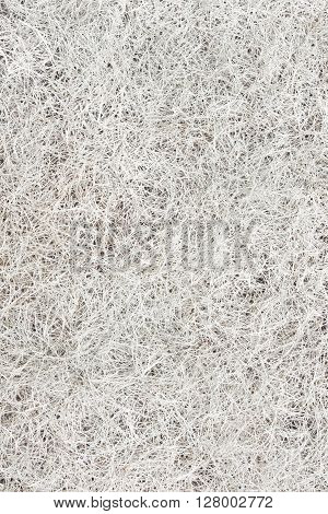 hay dry grass texture or background.dry grass isolated on white clean edges, no shadows.