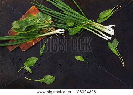 leaves of sorrel and green onion on cutting board on a dark metallic background. blackout photo