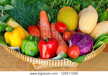 organic food with assorted raw vegetables in the basket.