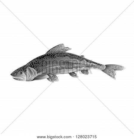 American rainbow trout salmon-predatory fish as wrought metal vintage vector illustration