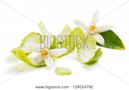Zest and flowers of lime fruit isolated on white background. Selective focus on the flower.