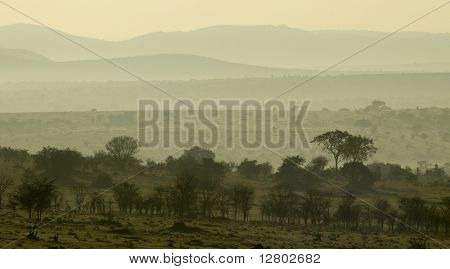 Scenic view of the Serengeti, Tanzania, Africa