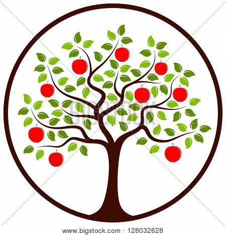vector apple tree in round isolated on white background