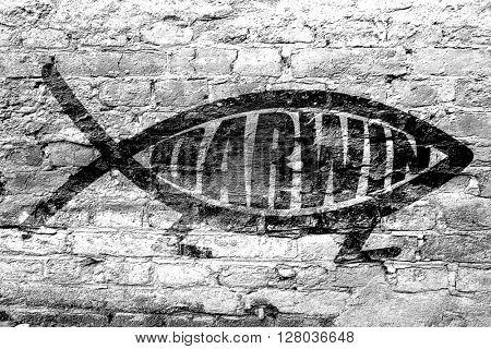 darwin fish symbol