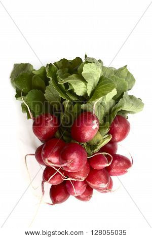 bunch of fresh radish on a white background