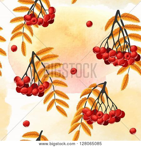 Rowan berries and leaves vector seamless background