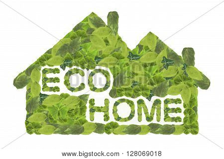 Eco home. Green house icon isolated on a white background.