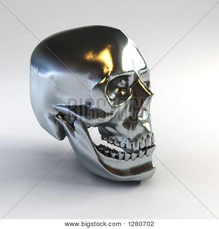 Skull 3D Rendering