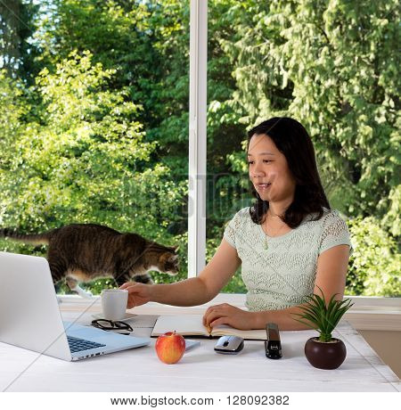 Mature woman working at home with cat and large daylight window in background.