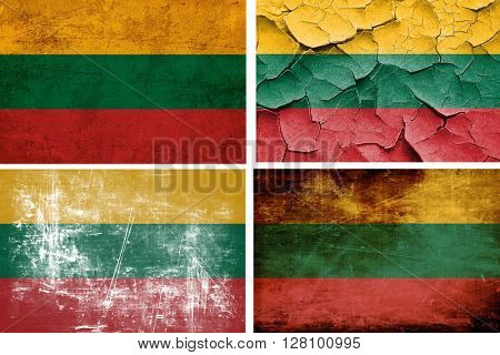 Lithuania flag collection. 4 different flags on white background