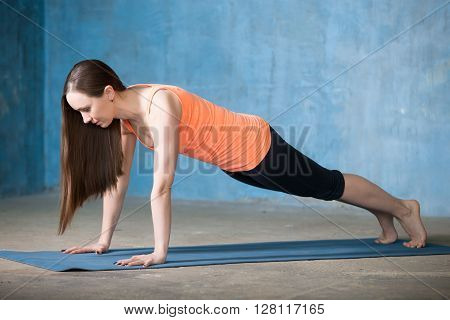 Sporty Beautiful Young Woman Doing Plank Exercise
