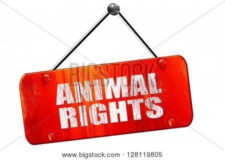 animal rights, 3D rendering, vintage old red sign