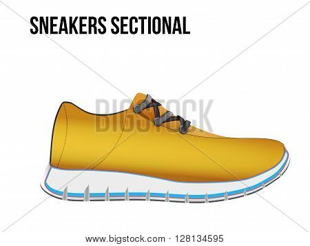 Technical illustration of sport shoes sneakers sectional. Demonstration of the structure of the material. 3D Illustration isolated on white background