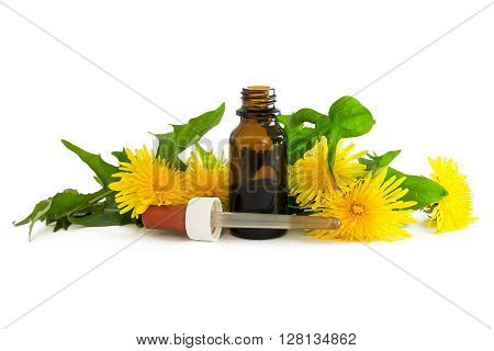 dandelion extract in a small bottle with fresh leaves and flowers isolated with shadows on a white background medicinal herb selected focus narrow depth of field