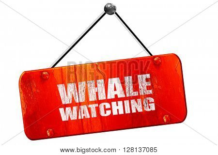 whale watching, 3D rendering, vintage old red sign