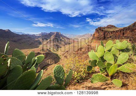 Mountain landscape of Gran Canaria island, Spain