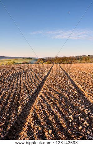 Ruts In Plowed Field