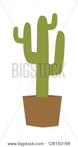 Cactus isolated vector illustration.