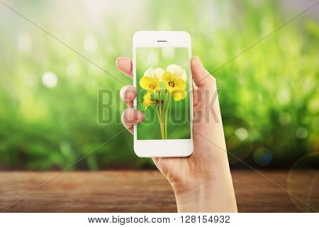 Woman hand holding smartphone with small flowers on screen against blur green background