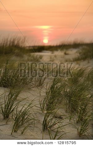 Sun setting over beach sand dune on Bald Head Island, North Carolina.