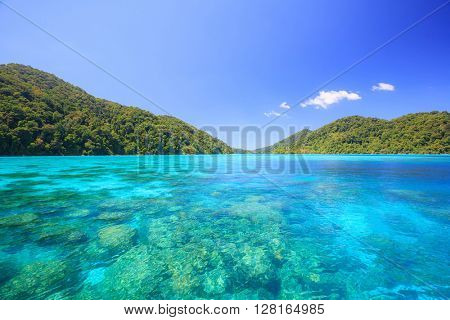 Snorkeling point woth beautiful coralscape at Surin national park Phuket Thailand