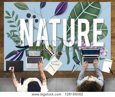 Nature Environment Green Earth Growth Natural Concept