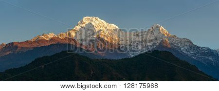 The Annapurna South and the Hiunchuli at sunrise panoramic view, Nepal