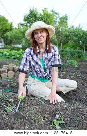 young woman weeding the beds with sprouts zucchini in the garden