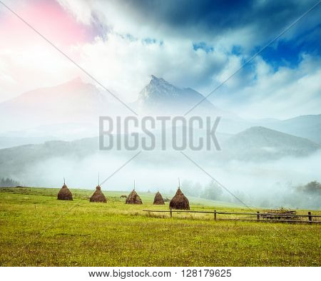 Great view of the green hills which glowing by sunlight. Dramatic scene and picturesque picture. Location place Swiss alps, Europe. Beauty world. Soft filter, vintage style. Instagram toning effect.