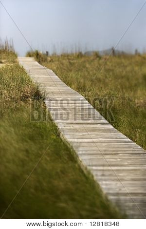 Wooden access path to beach on Bald Head Island, North Carolina.