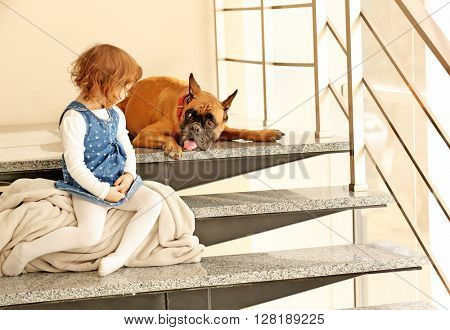 Little cute girl with boxer dog sitting on the stairs indoor