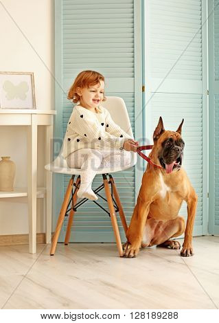 Little cute girl sitting on a chair and holding boxer dog by the collar