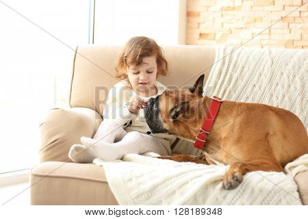 Little cute girl with boxer dog sitting on a couch at home