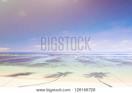 Beautiful Scenic Beach Concept