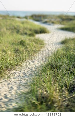 Sandy pathway to beach on Bald Head Island, North Carolina.