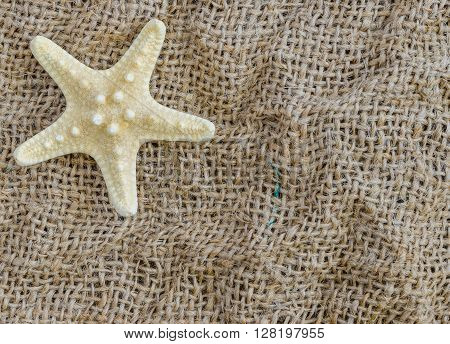 Starfish lies on a beautiful fabric background