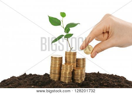 Female hand putting coin on stack of coins in soil with young plant isolated on white