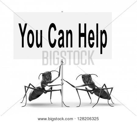 You can help us find a solution for our problem. We need your support and assistance,