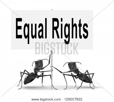 Equal rights no discrimination and same opportunities for all women man disabled black and white solidarity discrimination of people with disability or physical and mental handicap, road sign.