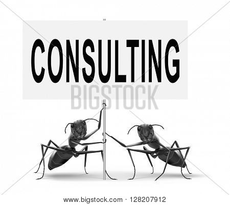consulting and giving expert advice.