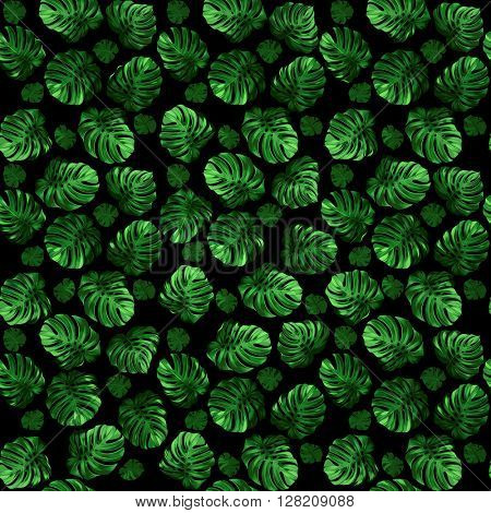 Seamless pattern of leaves monstera on the black background