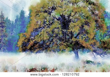 Beautiful Painting of a tree in fog