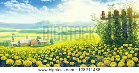 Summer rural landscape with blossoming dandelions flowers and  and farm on the background.
