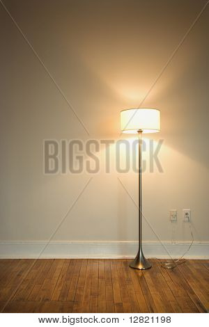 Still life of floor lamp on hardwood floor.