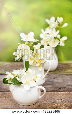 Bouquet of jasmine in white vase in the garden