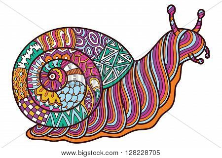 Cute ornate snail. Vector illustration of cute ornate zentangle garden snail