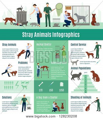 Stray animals infographics set with the calculation value on veterinary services population number of animals from a shelter who gained home vector illustration