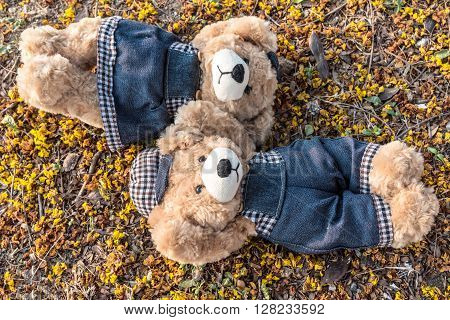 Couple teddy bears rest on ground with yellow petal background two teddy bears relax in garden love and friendship concept