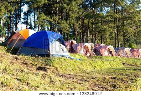 Selected focus on blue tent Camping tent on moutain in the forest